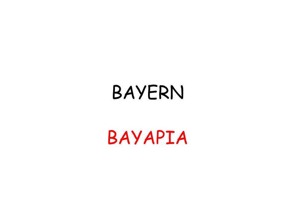BAYERN ΒΑΥΑΡΙΑ