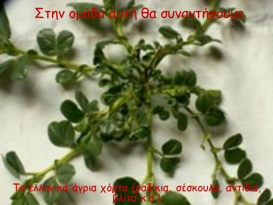 Τα ελληνικά άγρια χόρτα (ραδίκια, σέσκουλα, αντίδια, βλίτα κ.ά.) Στην ομάδα αυτή θα συναντήσουμε