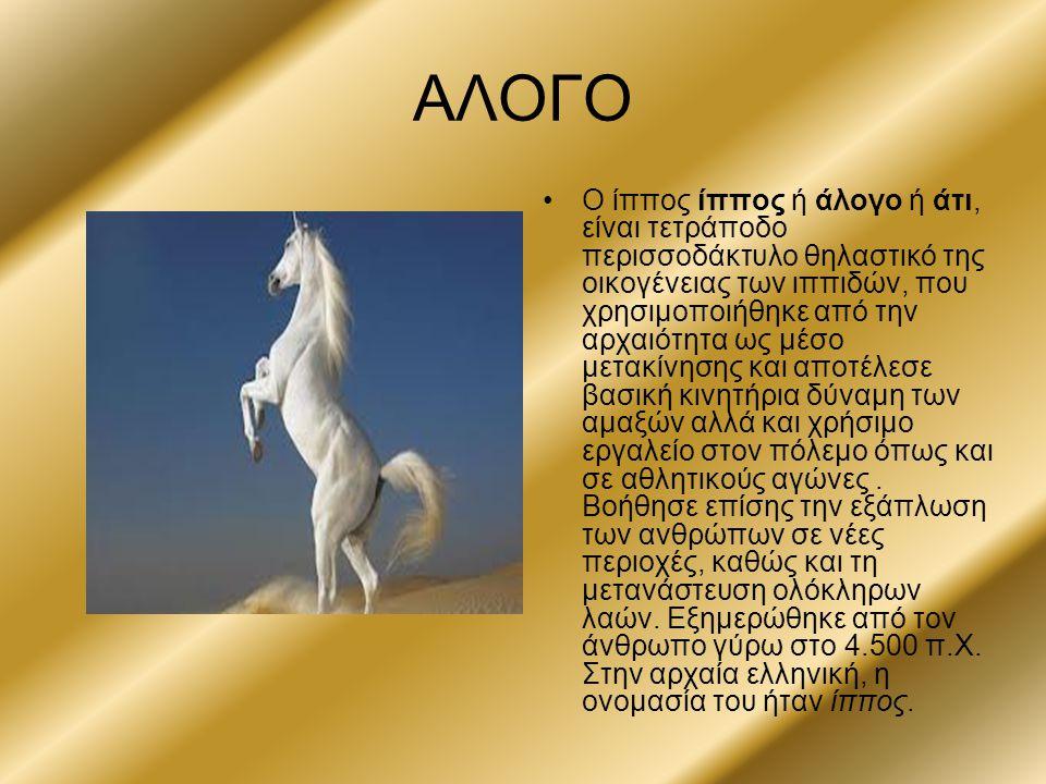 ΑΛΟΓΟ Ο ίππος ίππος ή άλογο ή άτι, είναι τετράποδο περισσοδάκτυλο θηλαστικό της οικογένειας των ιππιδών, που χρησιμοποιήθηκε από την αρχαιότητα ως μέσ