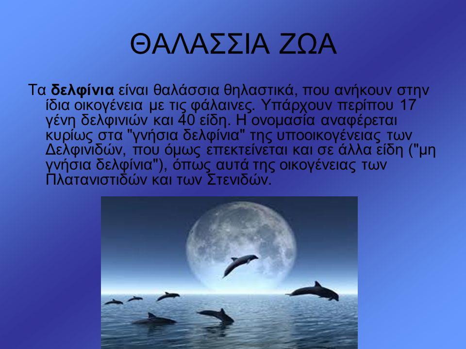 ΘΑΛΑΣΣΙΑ ΖΩΑ Τα δελφίνια είναι θαλάσσια θηλαστικά, που ανήκουν στην ίδια οικογένεια με τις φάλαινες. Υπάρχουν περίπου 17 γένη δελφινιών και 40 είδη. Η
