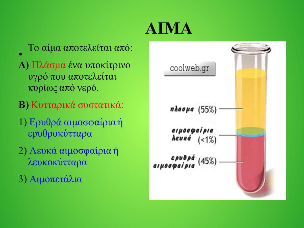 ΑΙΜΑ ● Το αίμα αποτελείται από: Α) Πλάσμα ένα υποκίτρινο υγρό που αποτελείται κυρίως από νερό. Β) Κυτταρικά συστατικά: 1) Ερυθρά αιμοσφαίρια ή ερυθροκ