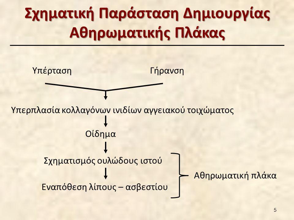 Σχηματική Παράσταση Δημιουργίας Αθηρωματικής Πλάκας ΥπέρτασηΓήρανση Υπερπλασία κολλαγόνων ινιδίων αγγειακού τοιχώματος Οίδημα Σχηματισμός ουλώδους ιστού Εναπόθεση λίπους – ασβεστίου Αθηρωματική πλάκα 5
