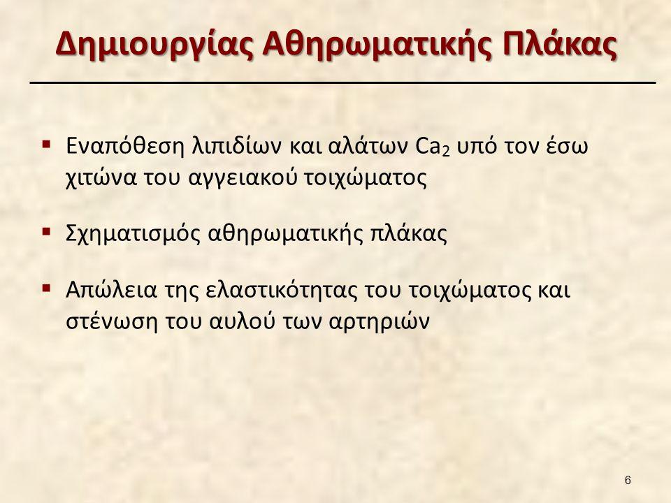 Δημιουργίας Αθηρωματικής Πλάκας  Εναπόθεση λιπιδίων και αλάτων Ca 2 υπό τον έσω χιτώνα του αγγειακού τοιχώματος  Σχηματισμός αθηρωματικής πλάκας  Απώλεια της ελαστικότητας του τοιχώματος και στένωση του αυλού των αρτηριών 6