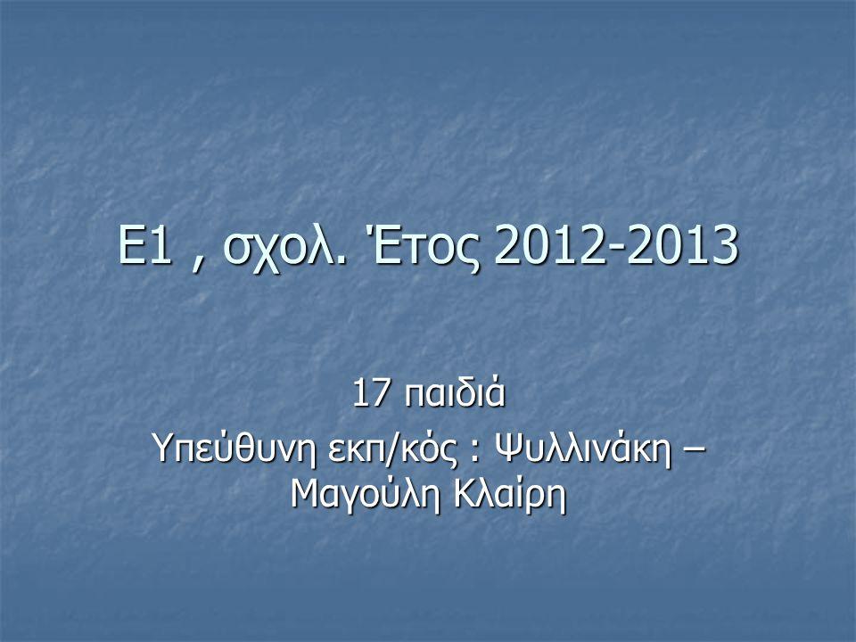 E1, σχολ. Έτος 2012-2013 17 παιδιά Υπεύθυνη εκπ/κός : Ψυλλινάκη – Μαγούλη Κλαίρη