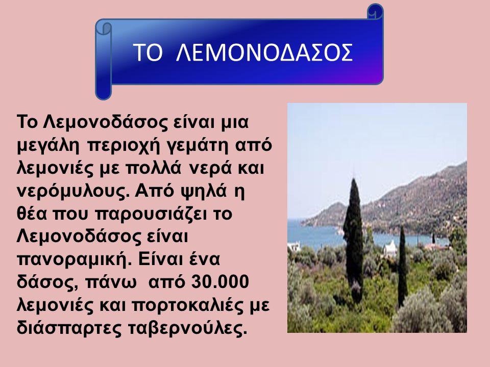Το Λεμονοδάσος είναι μια μεγάλη περιοχή γεμάτη από λεμονιές με πολλά νερά και νερόμυλους. Από ψηλά η θέα που παρουσιάζει το Λεμονοδάσος είναι πανοραμι