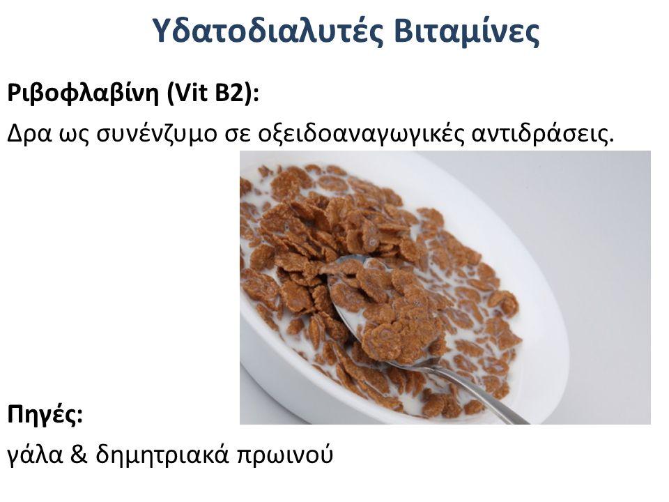 Υδατοδιαλυτές Βιταμίνες Ριβοφλαβίνη (Vit Β2): Δρα ως συνένζυμο σε οξειδοαναγωγικές αντιδράσεις. Πηγές: γάλα & δημητριακά πρωινού