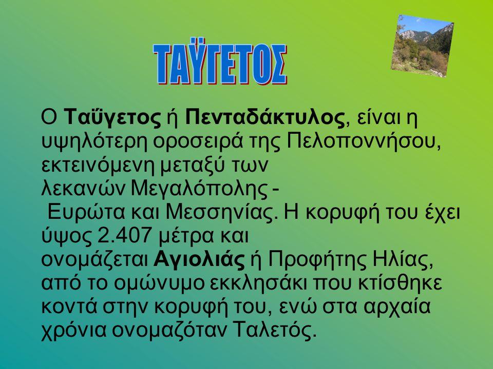 Ο Ταΰγετος ή Πενταδάκτυλος, είναι η υψηλότερη οροσειρά της Πελοποννήσου, εκτεινόμενη μεταξύ των λεκανών Μεγαλόπολης - Ευρώτα και Μεσσηνίας. Η κορυφή τ