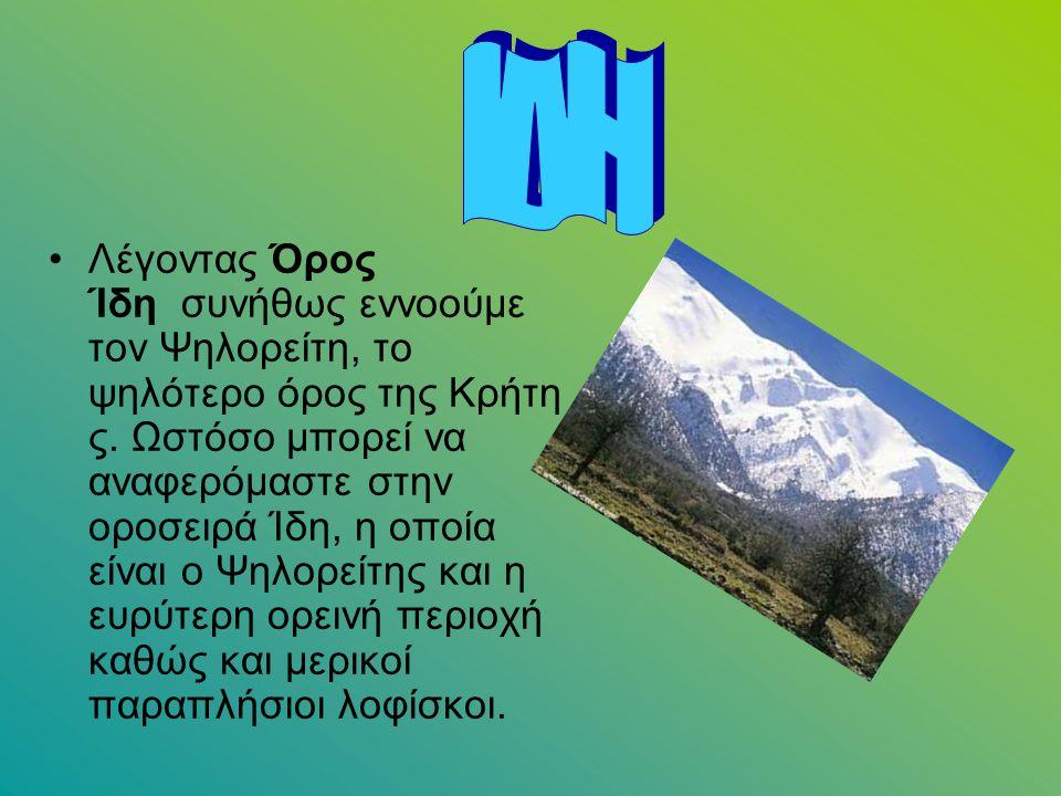 Λέγοντας Όρος Ίδη συνήθως εννοούμε τον Ψηλορείτη, το ψηλότερο όρος της Κρήτη ς. Ωστόσο μπορεί να αναφερόμαστε στην οροσειρά Ίδη, η οποία είναι ο Ψηλορ