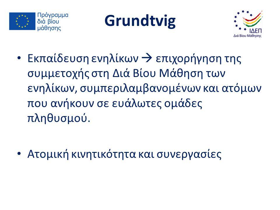 Συμμετοχή ευάλωτων ομάδων πληθυσμού Στοχευμένη επικοινωνία ΙΔΕΠ με οργανωμένα σύνολα Εργαστήρια Grundtvig Σχέδια Εθελοντισμού Grundtvig για Άτομα Μεγαλύτερης Ηλικίας Κινητικότητα Leonardo da Vinci