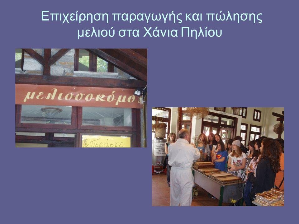 Επιχείρηση παραγωγής και πώλησης μελιού στα Χάνια Πηλίου
