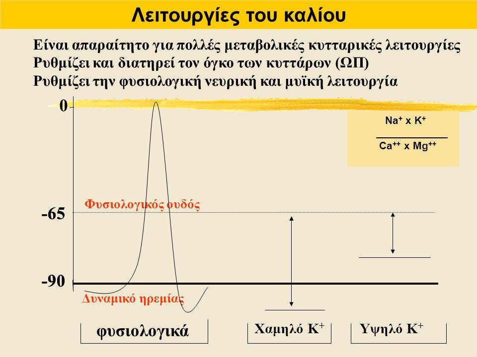 Λειτουργίες του καλίου Είναι απαραίτητο για πολλές μεταβολικές κυτταρικές λειτουργίες Ρυθμίζει και διατηρεί τον όγκο των κυττάρων (ΩΠ) Ρυθμίζει την φυ