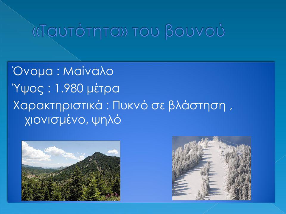 Όνομα : Μαίναλο Ύψος : 1.980 μέτρα Χαρακτηριστικά : Πυκνό σε βλάστηση, χιονισμένο, ψηλό Όνομα : Μαίναλο Ύψος : 1.980 μέτρα Χαρακτηριστικά : Πυκνό σε βλάστηση, χιονισμένο, ψηλό
