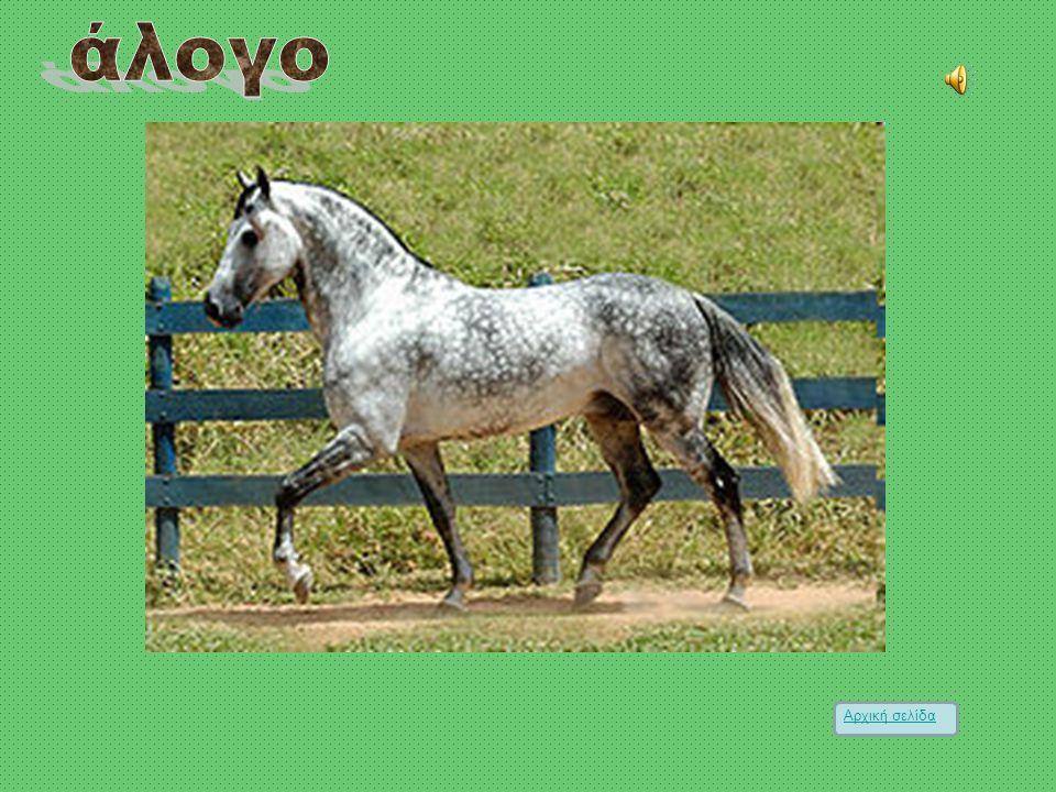 Το άλογο ή το άτι[1], (Equus caballus), είναι τετράποδο περισσοδάκτυλο θηλαστικό της οικογένειας των ιππιδών (Equidae), που χρησιμοποιήθηκε από την αρ