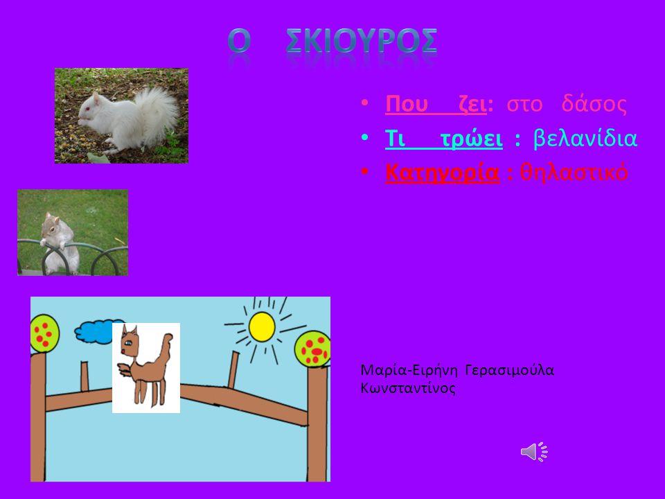 Που ζει: βουνό Τι τρώει: χορτάρι Κατηγορία: θηλαστικό Παύλος Μάξιμος Ήχoς Αλόγου