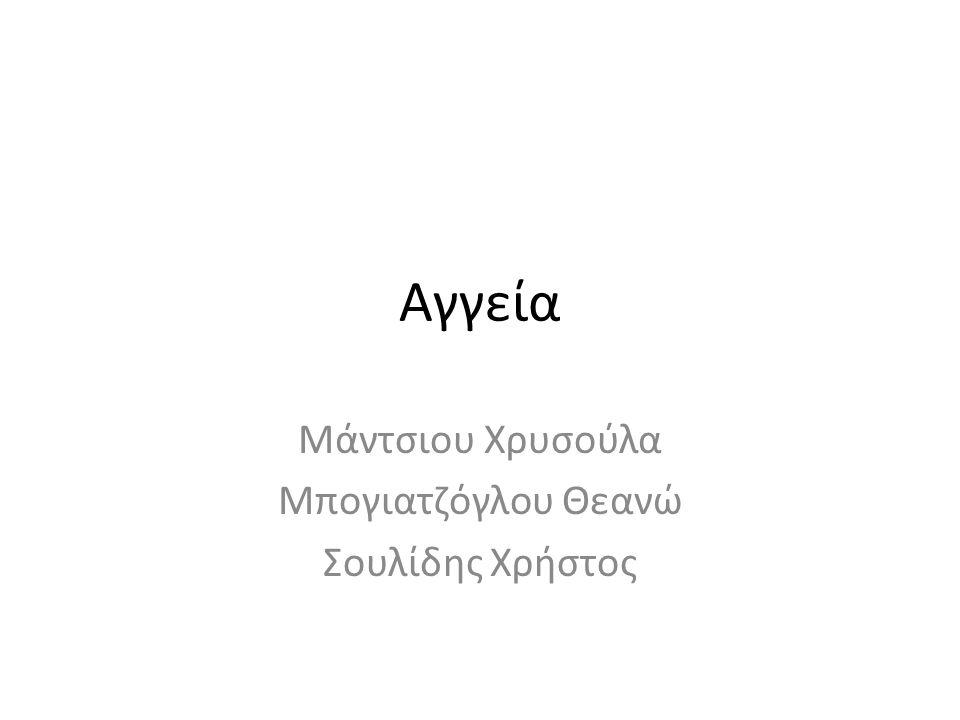 Αγγεία Μάντσιου Χρυσούλα Μπογιατζόγλου Θεανώ Σουλίδης Χρήστος