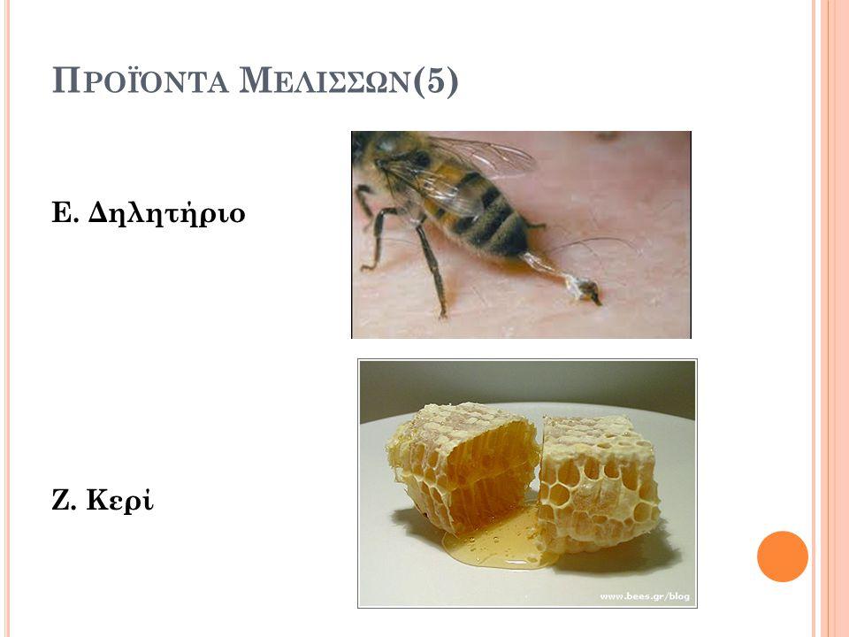 Π ΡΟΪΌΝΤΑ Μ ΕΛΙΣΣΩΝ (5) Ε. Δηλητήριο Ζ. Κερί
