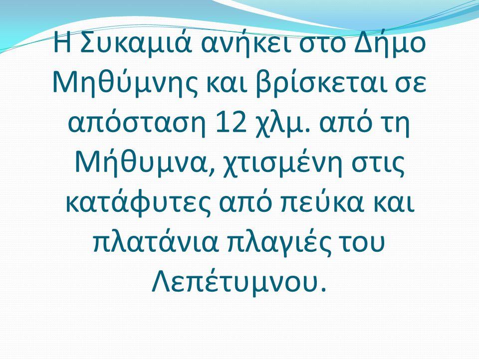 Η Συκαμιά ανήκει στο Δήμο Μηθύμνης και βρίσκεται σε απόσταση 12 χλμ.