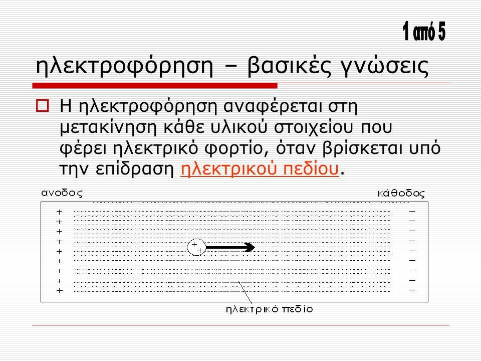 ηλεκτροφόρηση – βασικές γνώσεις  Η ηλεκτροφόρηση αναφέρεται στη μετακίνηση κάθε υλικού στοιχείου που φέρει ηλεκτρικό φορτίο, όταν βρίσκεται υπό την ε