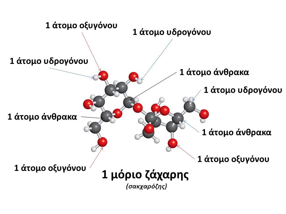 1 μόριο ζάχαρης (σακχαρόζης) 1 άτομο οξυγόνου 1 άτομο υδρογόνου 1 άτομο άνθρακα