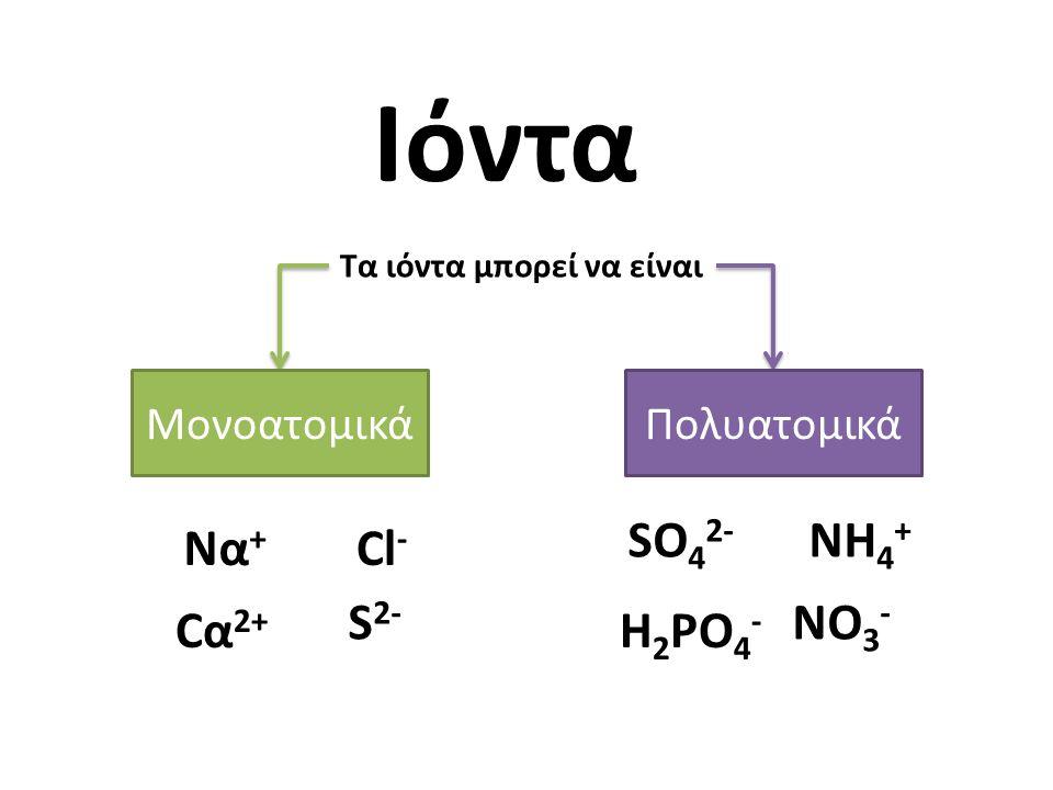 Ιόντα Τα ιόντα μπορεί να είναι ΜονοατομικάΠολυατομικά Να + Cl - Cα2+Cα2+ S 2- SO 4 2- NO 3 - NH 4 + H 2 PO 4 -