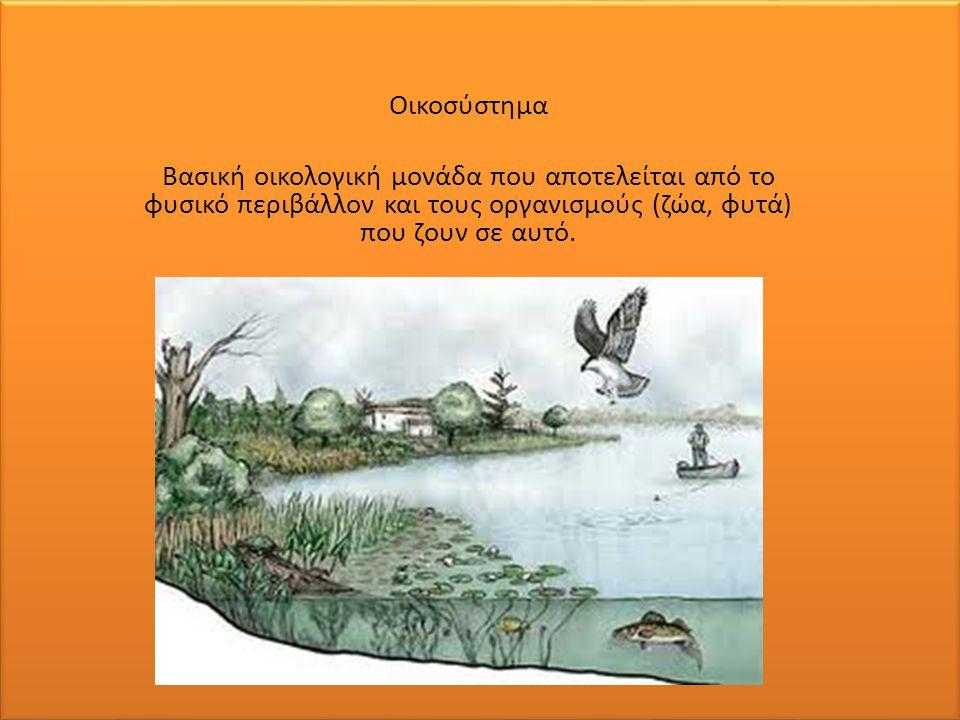 .. Οικοσύστημα Βασική οικολογική μονάδα που αποτελείται από το φυσικό περιβάλλον και τους οργανισμούς (ζώα, φυτά) που ζουν σε αυτό.