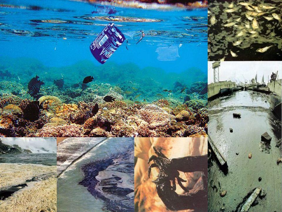 Ρύπανση από Πετρελαιοειδή Ποσότητες πετρελαίου που λόγω ατυχήματος ή ανθρώπινης αμέλειας διαρρέουν και εξαπλώνονται στην επιφάνεια της θάλασσας, αποτελώντας μία από τις σοβαρότερες αιτίες ρύπανσης και καταστροφής της χλωρίδας και της πανίδας στην έκταση που καταλαμβάνουν.
