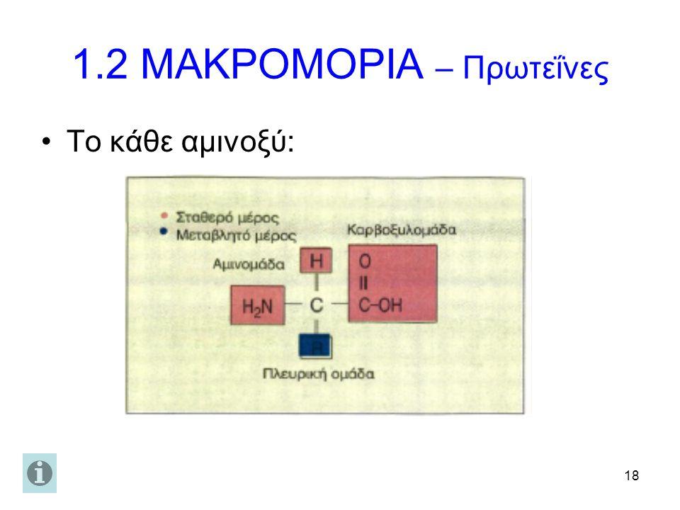 18 1.2 ΜΑΚΡΟΜΟΡΙΑ – Πρωτεΐνες Το κάθε αμινοξύ: