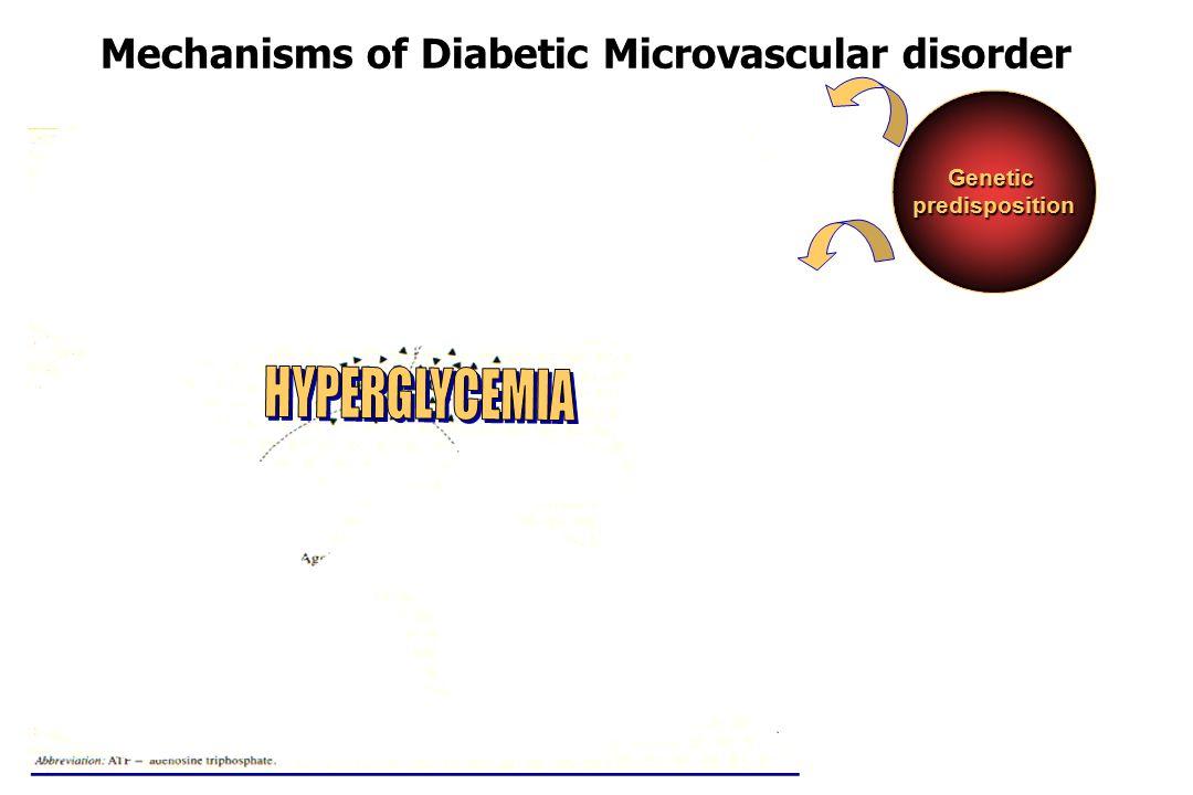 Mechanisms of Diabetic Microvascular disorder