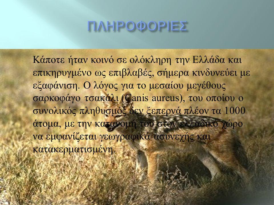  http://www.youtube.com/watch?v=v7ej2RPo eMo http://www.youtube.com/watch?v=v7ej2RPo eMo