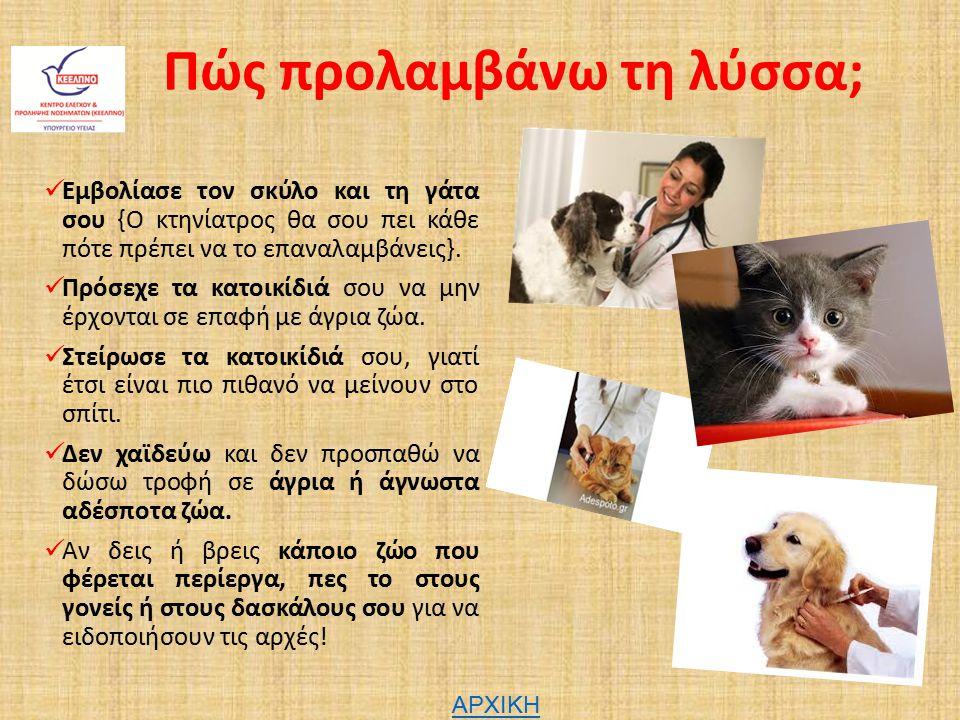 Πώς προλαμβάνω τη λύσσα; Εμβολίασε τον σκύλο και τη γάτα σου {Ο κτηνίατρος θα σου πει κάθε πότε πρέπει να το επαναλαμβάνεις}. Πρόσεχε τα κατοικίδιά σο