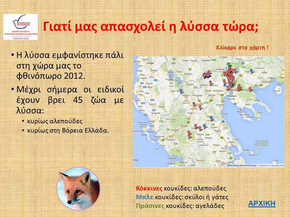Γιατί μας απασχολεί η λύσσα τώρα; Η λύσσα εμφανίστηκε πάλι στη χώρα μας το φθινόπωρο 2012. Μέχρι σήμερα οι ειδικοί έχουν βρει 45 ζώα με λύσσα: κυρίως