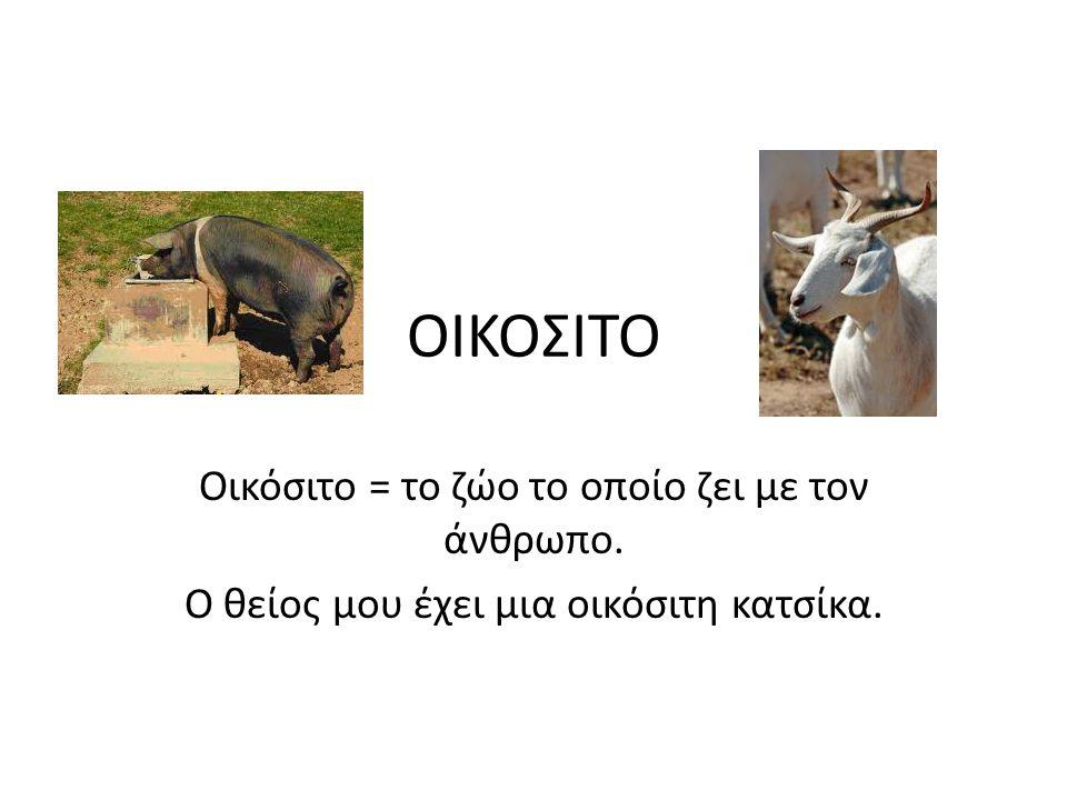ΟΙΚΟΣΙΤΟ Οικόσιτο = το ζώο το οποίο ζει με τον άνθρωπο. Ο θείος μου έχει μια οικόσιτη κατσίκα.