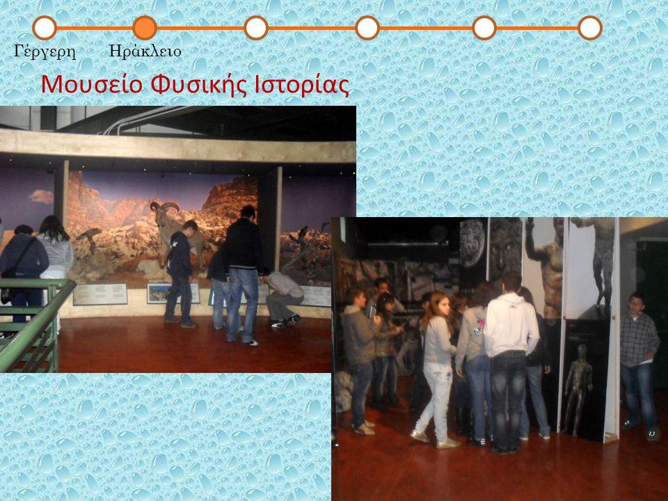 Μουσείο Φυσικής Ιστορίας ΓέργερηΗράκλειο