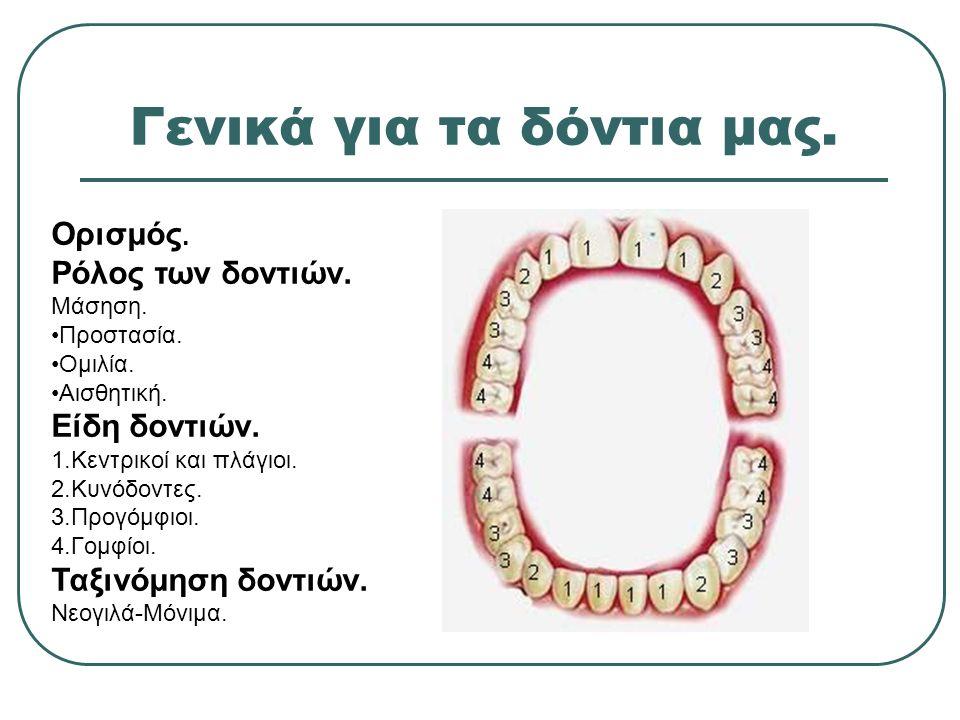 Γενικά για τα δόντια μας. Ορισμός. Ρόλος των δοντιών. Μάσηση. Προστασία. Ομιλία. Αισθητική. Είδη δοντιών. 1.Κεντρικοί και πλάγιοι. 2.Κυνόδοντες. 3.Προ