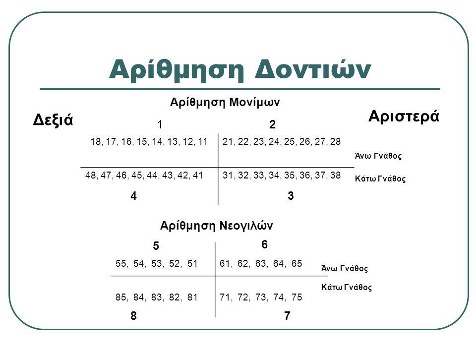 Αρίθμηση Δοντιών 18, 17, 16, 15, 14, 13, 12, 1121, 22, 23, 24, 25, 26, 27, 28 48, 47, 46, 45, 44, 43, 42, 4131, 32, 33, 34, 35, 36, 37, 38 55, 54, 53,