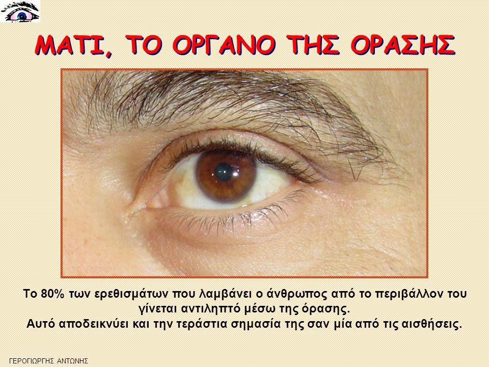 ΜΑΤΙ, ΤΟ ΟΡΓΑΝΟ ΤΗΣ ΟΡΑΣΗΣ ΜΑΤΙ, ΤΟ ΟΡΓΑΝΟ ΤΗΣ ΟΡΑΣΗΣ ΓΕΡΟΓΙΩΡΓΗΣ ΑΝΤΩΝΗΣ Tο 80% των ερεθισμάτων που λαμβάνει ο άνθρωπος από το περιβάλλον του γίνεται αντιληπτό μέσω της όρασης.