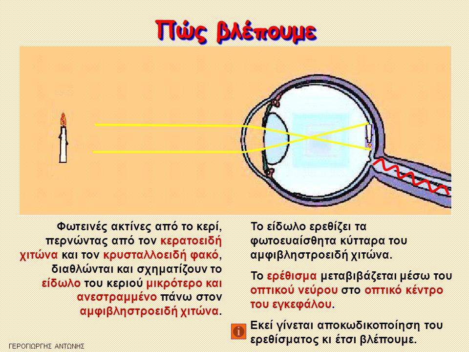 Η αποκωδικοποίηση του ερεθίσματος Η αποκωδικοποίηση του ερεθίσματος Το μάτι αποτελεί ένα αισθητήριο όργανο, το οποίο λαμβάνει την εικόνα ως οπτική ακτινοβολία (χρώματα, σχήματα), αλλά η διεργασία της όρασης γίνεται στον εγκέφαλο.