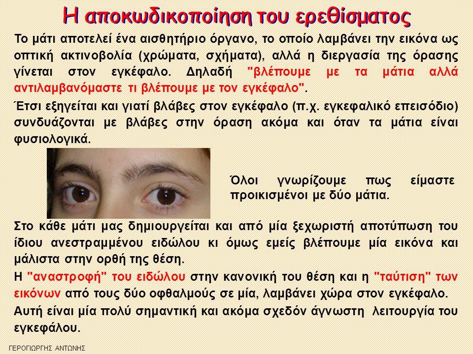 Η αποκωδικοποίηση του ερεθίσματος Η αποκωδικοποίηση του ερεθίσματος Το μάτι αποτελεί ένα αισθητήριο όργανο, το οποίο λαμβάνει την εικόνα ως οπτική ακτ