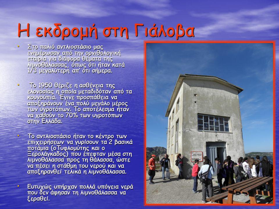 Η εκδρομή στη Γιάλοβα Στο παλιό αντλιοστάσιο μας ενημέρωσαν από την ορνιθολογική εταιρία για διάφορα θέματα της λιμνοθάλασσας, όπως ότι ήταν κατά 1/3 μεγαλύτερη απ' ότι σήμερα.