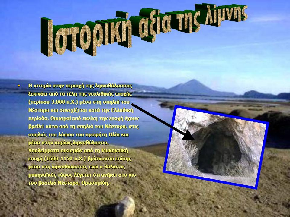 Η ιστορία στην περιοχή της λιμνοθάλασσας ξεκινάει από τα τέλη της νεολιθικής εποχής (περίπου 3.000 π.Χ.) μέσα στη σπηλιά του Νέστορα και συνεχίζεται κατά την Ελλαδική περίοδο.