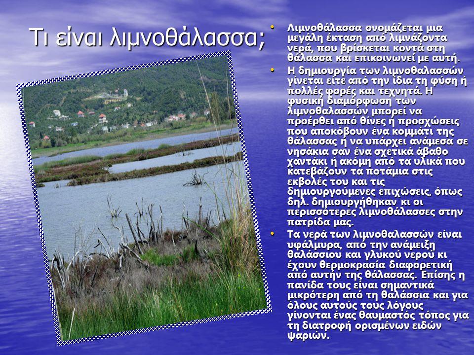 Τι είναι λιμνοθάλασσα; Λιμνοθάλασσα ονομάζεται μια μεγάλη έκταση από λιμνάζοντα νερά, που βρίσκεται κοντά στη θάλασσα και επικοινωνεί με αυτή.