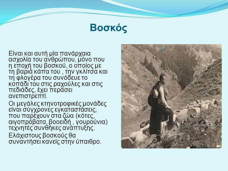 Βοσκός Είναι και αυτή μία πανάρχαια ασχολία του ανθρώπου, μόνο που η εποχή του βοσκού, ο οποίος με τη βαριά κάπα του, την γκλίτσα και τη φλογέρα του σ