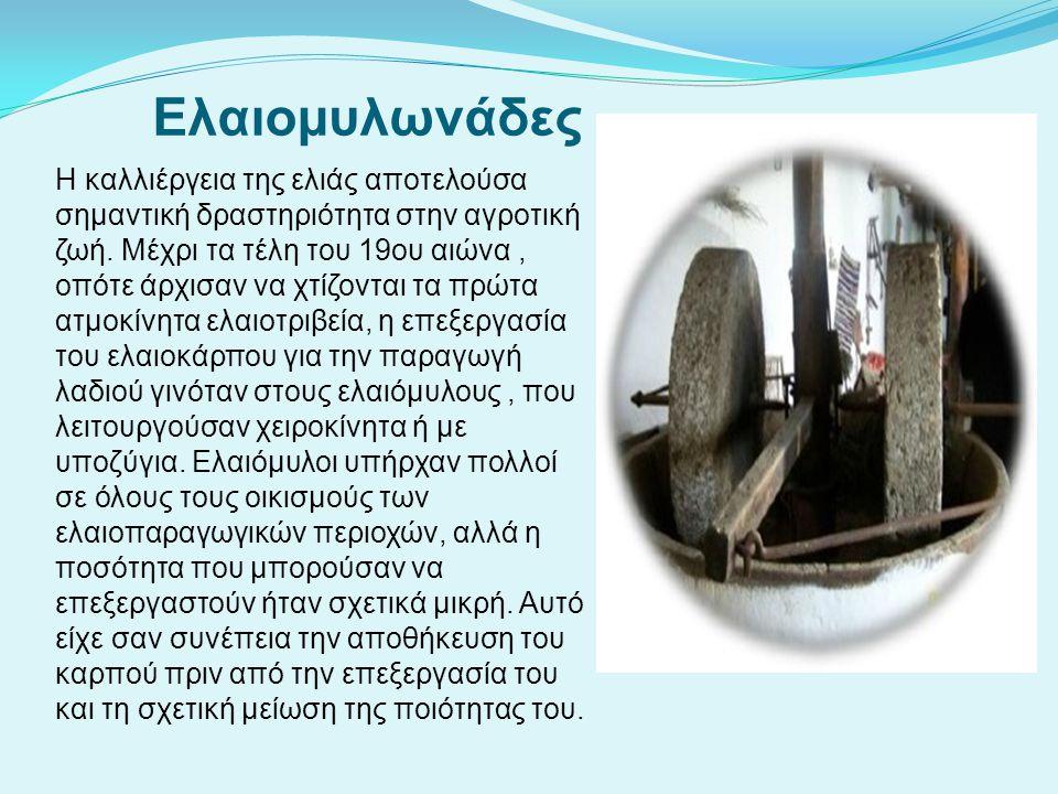 Ελαιομυλωνάδες Η καλλιέργεια της ελιάς αποτελούσα σημαντική δραστηριότητα στην αγροτική ζωή. Μέχρι τα τέλη του 19ου αιώνα, οπότε άρχισαν να χτίζονται