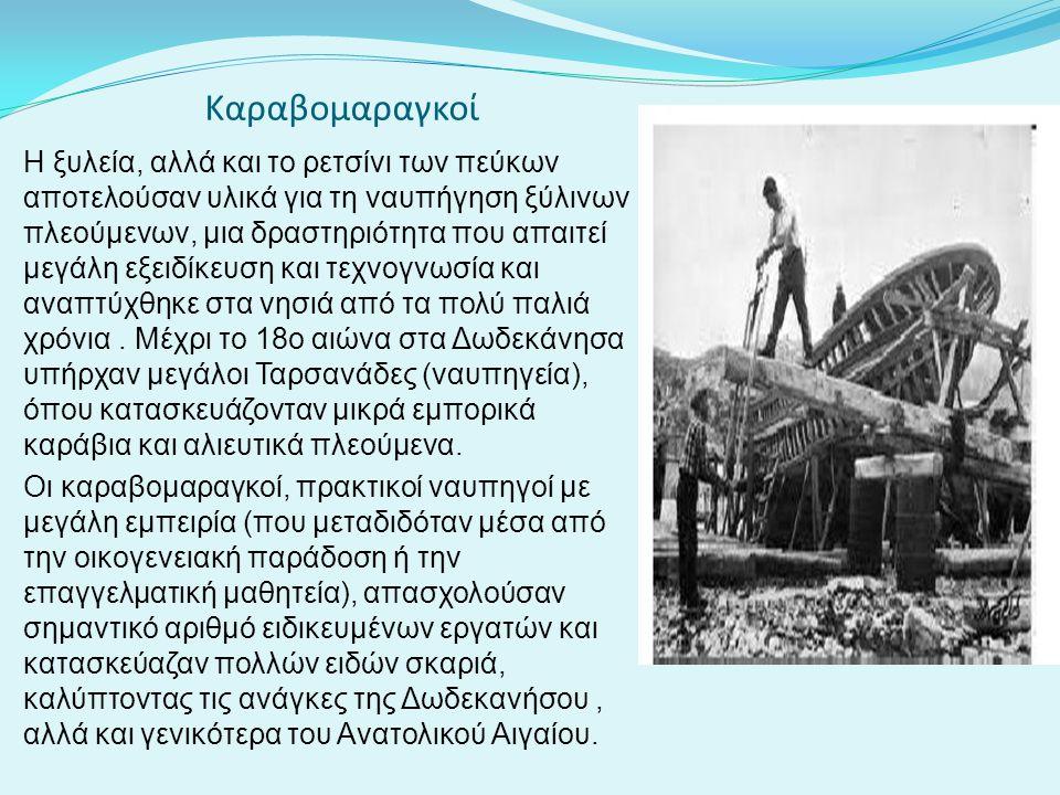 Καραβομαραγκοί Η ξυλεία, αλλά και το ρετσίνι των πεύκων αποτελούσαν υλικά για τη ναυπήγηση ξύλινων πλεούμενων, μια δραστηριότητα που απαιτεί μεγάλη εξ