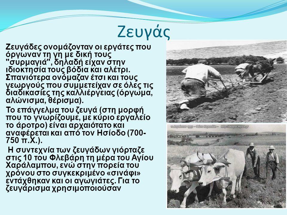 Ζευγάδες ονομάζονταν οι εργάτες που όργωναν τη γη με δική τους