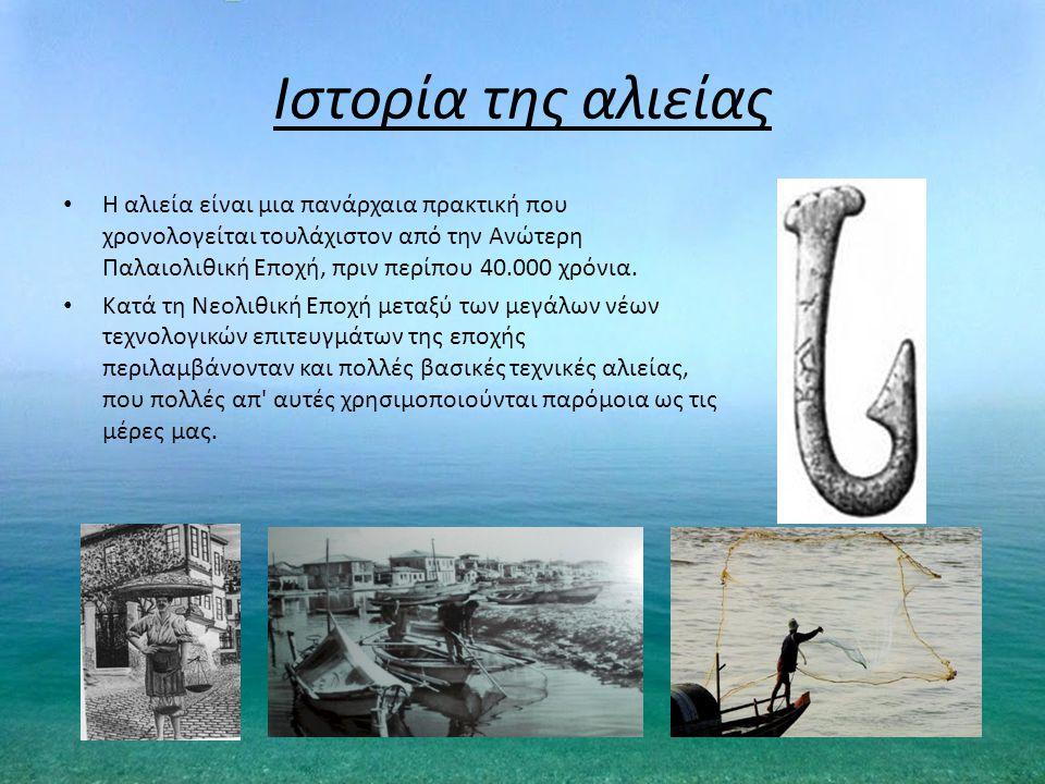 Ιστορία της αλιείας Η αλιεία είναι μια πανάρχαια πρακτική που χρονολογείται τουλάχιστον από την Ανώτερη Παλαιολιθική Εποχή, πριν περίπου 40.000 χρόνια