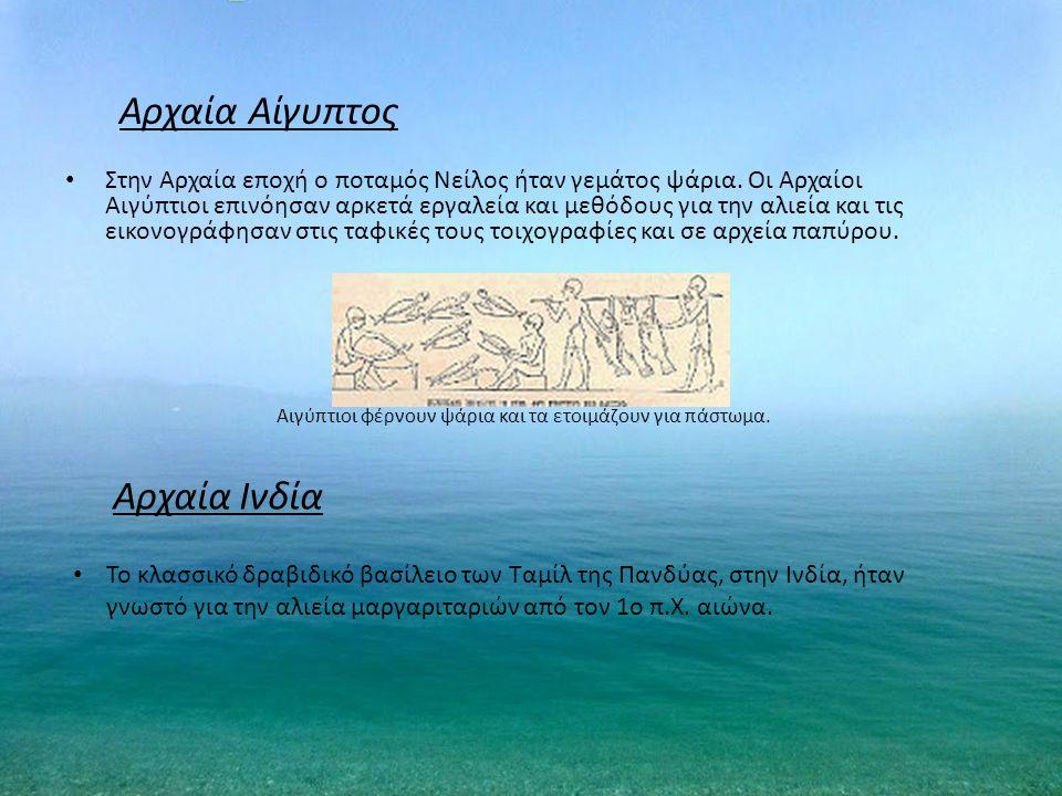 Αρχαία Αίγυπτος Στην Αρχαία εποχή ο ποταμός Νείλος ήταν γεμάτος ψάρια. Οι Αρχαίοι Αιγύπτιοι επινόησαν αρκετά εργαλεία και μεθόδους για την αλιεία και
