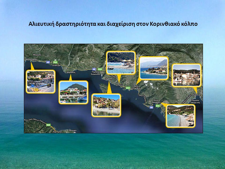 Αλιευτική δραστηριότητα και διαχείριση στον Κορινθιακό κόλπο