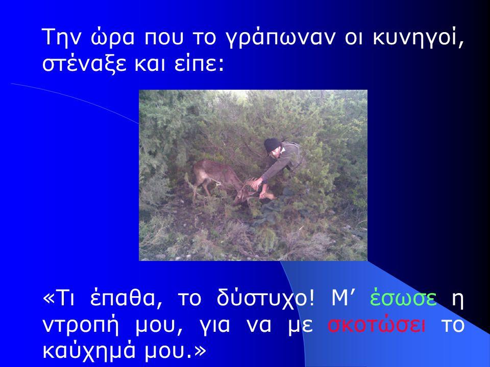 Την ώρα που το γράπωναν οι κυνηγοί, στέναξε και είπε: «Τι έπαθα, το δύστυχο! Μ' έσωσε η ντροπή μου, για να με σκοτώσει το καύχημά μου.»