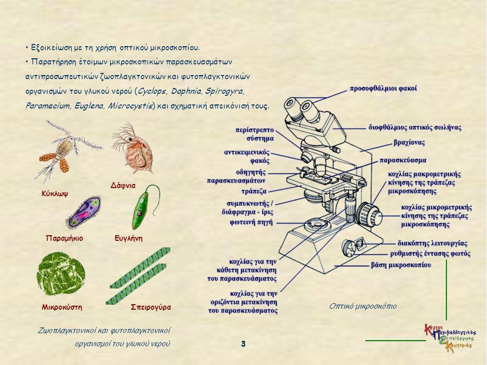 Εξοικείωση με τη χρήση οπτικού μικροσκοπίου. Παρατήρηση έτοιμων μικροσκοπικών παρασκευασμάτων αντιπροσωπευτικών ζωοπλαγκτονικών και φυτοπλαγκτονικών ο